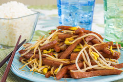 Spam Bean Sprout Stir Fry. Hawaiian stir fry made with spam and bean sprouts Royalty Free Stock Photo