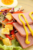 Spam And Salad. Sliced spam with mustard and a fresh garden salad with croutons Royalty Free Stock Photos