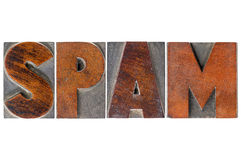 Spam word in wood type Royalty Free Stock Image