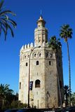 Torre del Oro and palm trees, Seville, Spain. View of the golden tower Torre del Oro, Seville, Seville Province, Andalusia, Spain, Europe royalty free stock photo