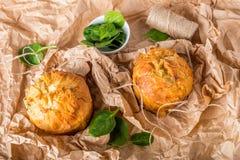 Spanakopita - torta greca degli spinaci con feta e la ricotta Immagine Stock