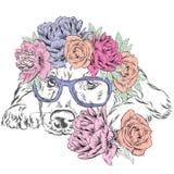 Spaniel che indossa una corona dei fiori Vettore sveglio del cucciolo Cane e fiori labrador Fotografia Stock