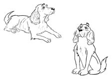 Spaniel dog outlines Royalty Free Stock Images