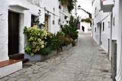 Spanien Andalusia, Casares Royaltyfria Bilder