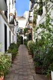 Spanien Andalusia, Marbella Arkivfoto