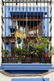 Spanien Cordoba die Patios Lizenzfreies Stockbild