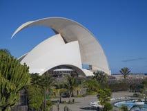 Spanien, Kanarische Inseln, Teneriffa, Santa Cruz de Tenerife, Decembe lizenzfreies stockbild