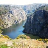 Spanien Portugal Arribes tun Duero-Vegetation Lizenzfreie Stockbilder