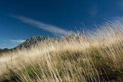 Spanien Pyrenees Arkivbild