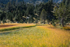 Spanien Pyrenees Royaltyfri Fotografi