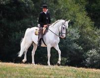 Spanische Frau, die ein Pferd reitet Stockfotografie