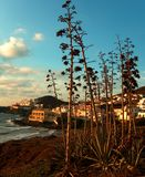 Spanische Landschaft Stockbilder