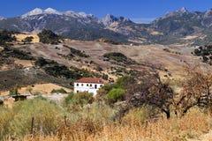 Spanische landwirtschaftliche Landschaft mit Bergen Lizenzfreies Stockbild