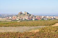 Spanische Stadt mit Weinbergen Stockbild