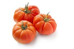 Spanische Tomaten Lizenzfreies Stockbild