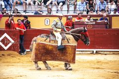 Spanischer Bullfight Pikador mit einer Stange auf einem Pferd Die erzürnten Stierangriffe der Stierkämpfer Spanien 2017 07 25 201 Lizenzfreies Stockfoto