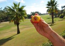 Spanischer Golfball in der Hand, Golf in Spanien Stockbild