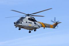 Spanischer Luftwaffen-Puma Lizenzfreies Stockbild