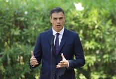 Spanischer Premierminister Pedro Sanchez-Gestikulieren stockbilder