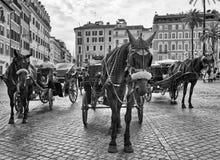 Spanischer Schritt-Pferdewagen Schwarzweiss lizenzfreie stockfotografie