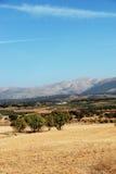 Spanisches Ackerland, Andalusien Lizenzfreies Stockbild