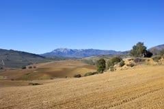 Spanisches Ackerland und Berge von Andalusien Stockfotografie