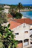 Spanisches Panorama mit Palmen Stockfotografie