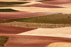 Spanischfelder Stockfoto