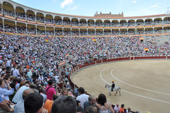 Spanish Royalty Free Stock Photos