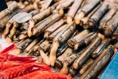 Spanish Alive razor clams shells Navajas on market Stock Photography