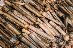 Spanish Alive Razor Clams Shells Navajas On Market Royalty Free Stock Photos