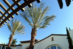 Spanish Architecture. A pergola, palm trees and a Spanish-style building stock images