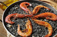 Spanish arroz negro, a typical rice casserole made with squid in. Closeup of spanish arroz negro, a typical rice casserole made with squid ink Royalty Free Stock Image