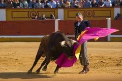 Spanish art Royalty Free Stock Images
