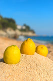 Spanish assortment fruit at the beach. Assortment Fresh Spanish fruit with Sombrero at the beach Stock Image