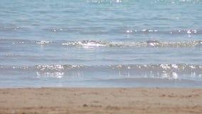 Spanish beaches in Catalonia. Sea surf, waves and sunlight glare.
