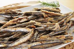 Spanish boquerones fritos, battered and fried anchovies typical Royalty Free Stock Photos