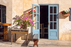 Spanish building entrance with flowers Royalty Free Stock Image