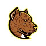 Spanish Bulldog or Spanish Alano Mascot Royalty Free Stock Photo