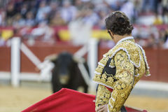 Spanish bullfighter Cesar Jimenez in the alley waiting at the pa Stock Images