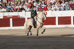 Spanish bullfighter on horseback Diego Ventura bullfighting on h Royalty Free Stock Images