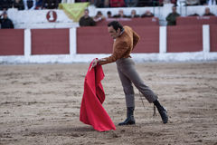 The spanish bullfighter Manuel Jesus. El Cid bullfighting in a bullfight in Linares, province of Jaen, Spain, Spain 14 march 2010 stock photography