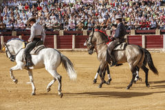 Spanish bullfighters on horseback at the paseillo or initial parade in Ubeda Royalty Free Stock Image