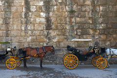 Spanish Carriage Stock Photography