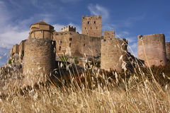 Spanish castle stock photography