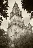 Spanish cathedral and Bell tower. Mezquita. Cordoba. Spain Stock Photography