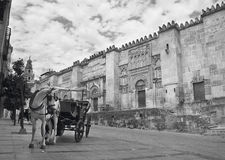 Spanish cathedral. Mezquita outdoor facade with horse drawn carr Royalty Free Stock Image