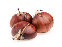 Spanish chestnuts isolated on white Royalty Free Stock Image