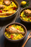 Spanish Chicken Paella Royalty Free Stock Photos