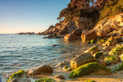 Spanish coast (Costa Brava) Royalty Free Stock Photo